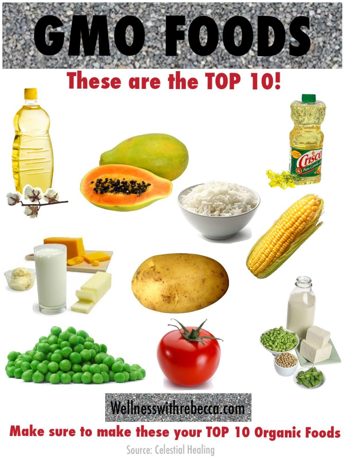 Top 10 Genetically Modified Organisms